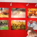 Krueger_Galerie_66